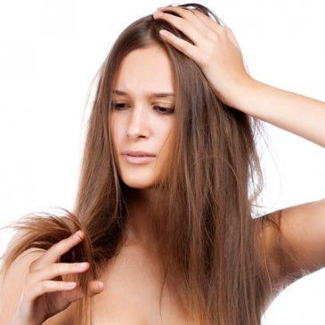 Conseils pour différents types de cheveux !!